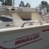 Boston Whaler 16SL 2